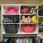 Purse Shelves