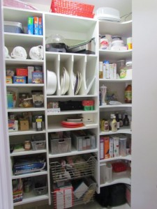 Shelves with Wire Baskets and Tray Organizer
